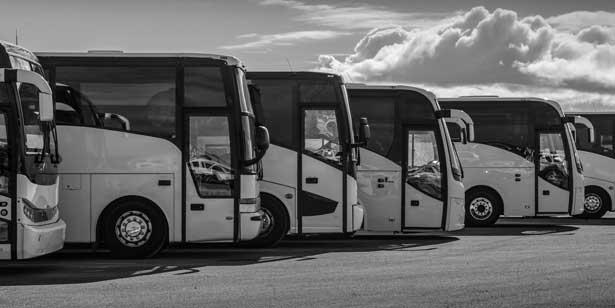 Лицензия на перевозку автобусами