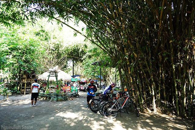 Memakirkan sepeda di rerimbunan bambu