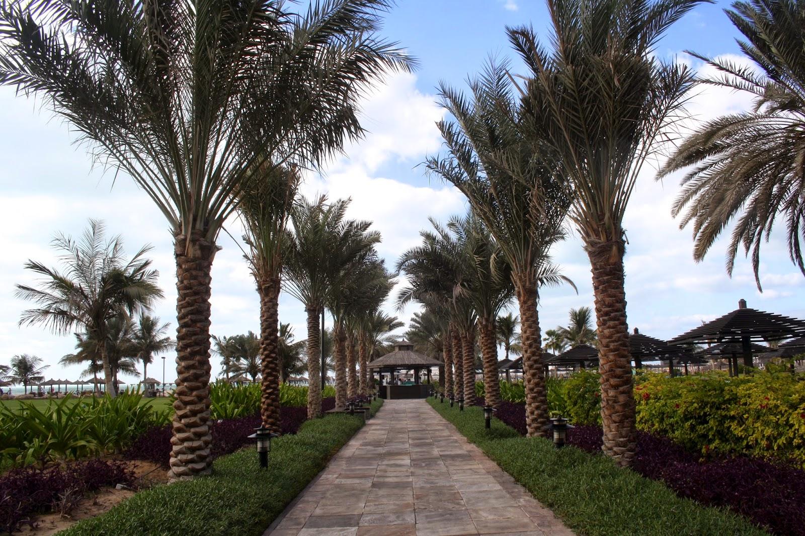 DUBAI PHOTO DIARY I. 29