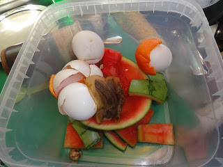 food scrap: egg shells, watermelon rind