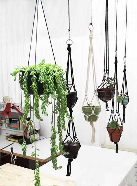 Hanging Pots 6