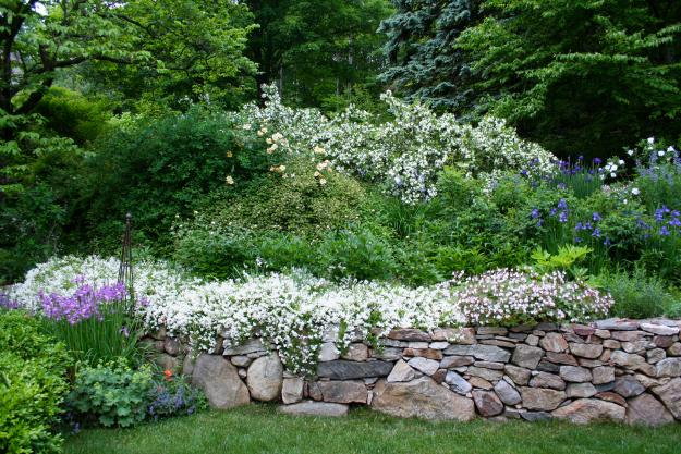 And My Favorite Part Of Designing Walls Especially Dry Stacked Fieldstone Like This One Is The Opportunity To Show Off Plants