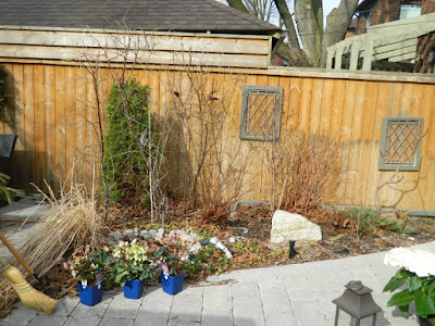 Leaside Toronto Spring Garden Clean up before by Paul Jung Gardening Services