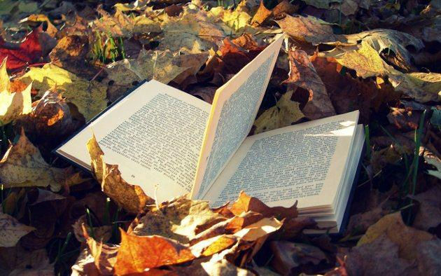 leer libros - photo #47