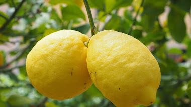 Cómo limpiar usando limón