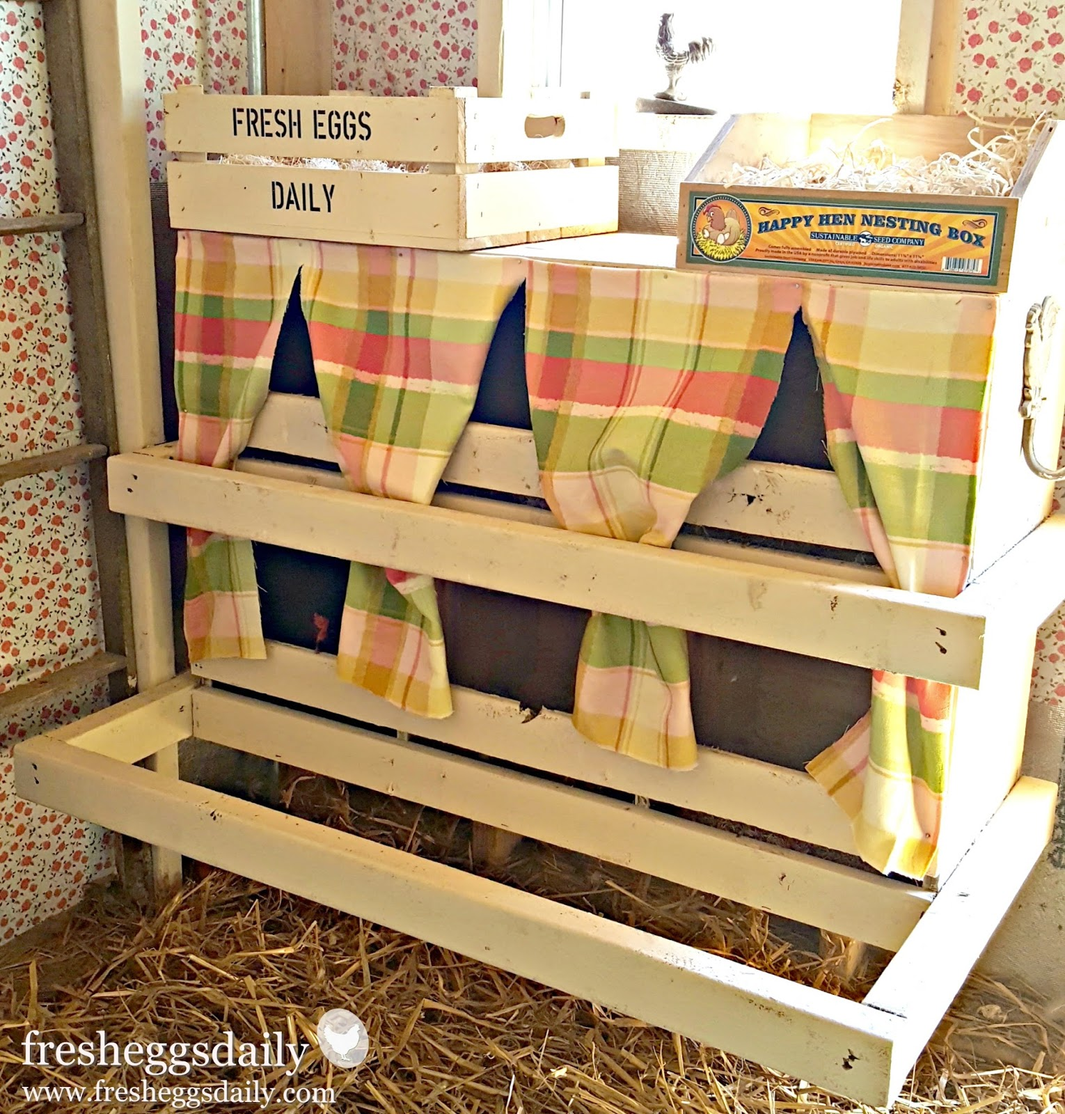 What Paint Is Safe To Use Inside A Chicken Coop