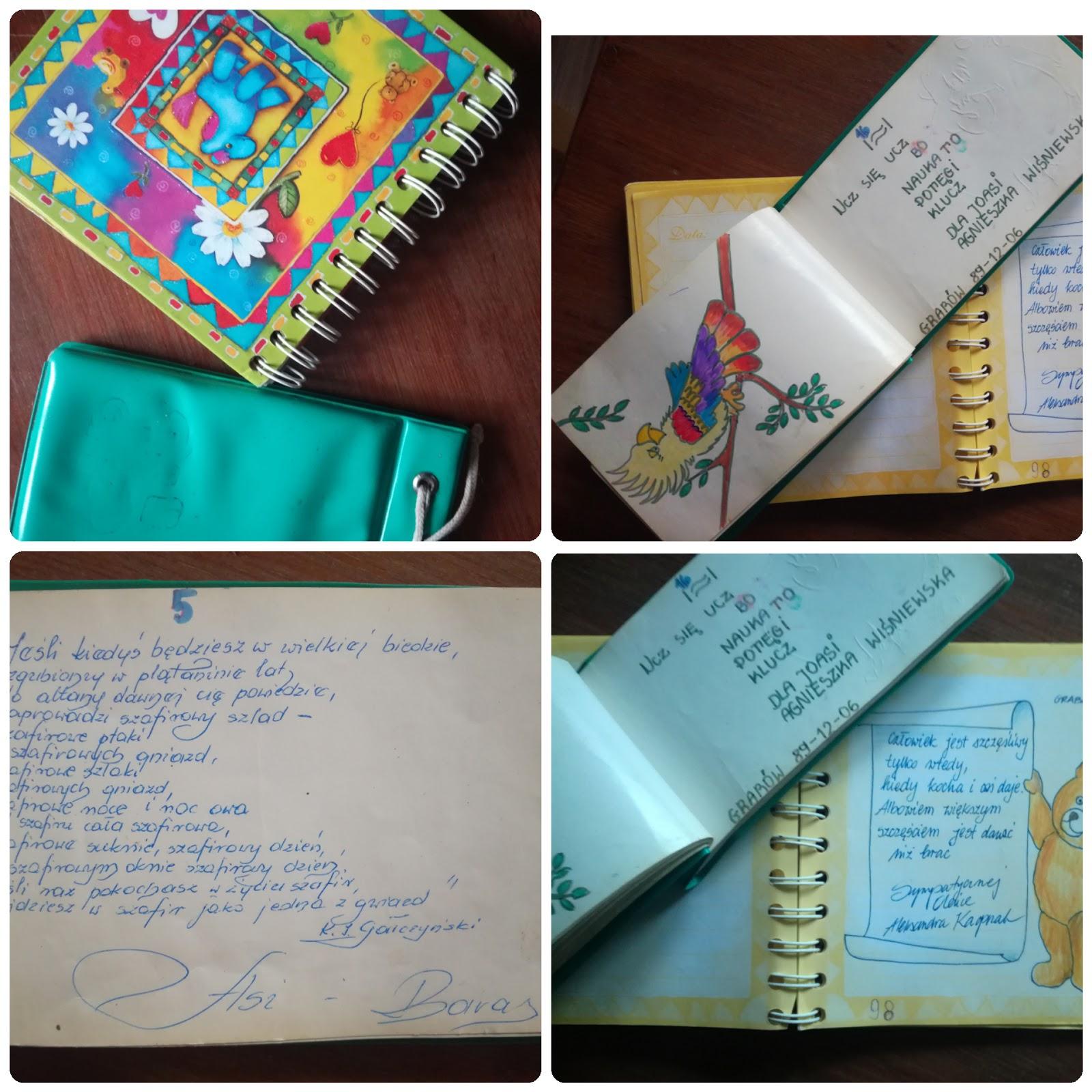 Kilka Pomysłów Na Lekcję Z Wpisem W Pamiętniku Zofii