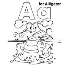 Aa For Aligator Coloring Pages Alphabets