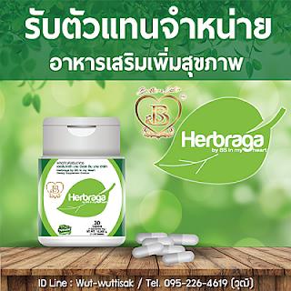 ต้องการหารายได้เสริม-รายได้พิเศษ เปิดรับตัวแทนจำหน่าย อาหารเสริม Herbraga