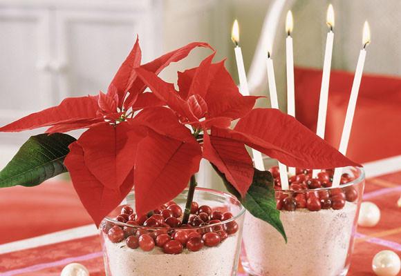 Marzua centros navide os para decorar la mesa - Adornos de navidad para la mesa ...