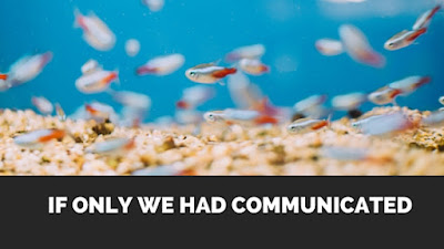 If only we had communicated fish in tank