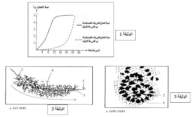 امتحان الثلاثي الأول في مادة علوم الطبيعة والحياة  شغبة الغلوم التجريبية