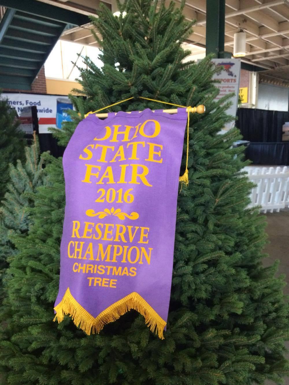 Kaleidoscope Farms: Kaleidoscope Farms Christmas tree named 2016 ...