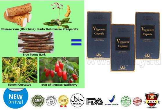obat supaya ereksi tahan lama dan kuat obat herbal