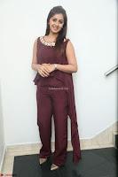 Nikki Galrani in a Brown Shining Sleeveless Gown at Nakshatram music launch ~  Exclusive 039.JPG