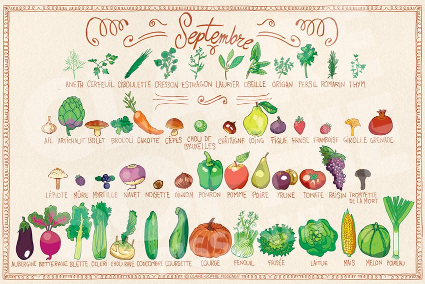 Calendrier des fruits et légumes de Septembre, comme les figues et les aubergines.