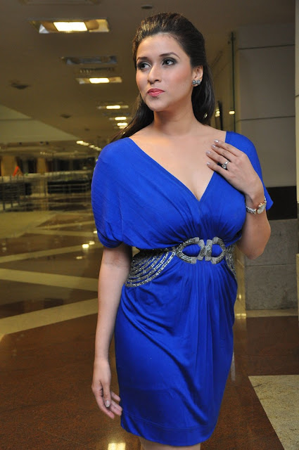 Mannara Chopra Pics at Rogue Movie Trailer Launch