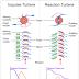 Working Principle of Impulse Turbines and Reaction Turbines.
