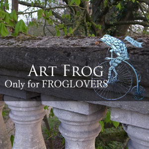 http://art-frog.com