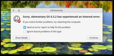 midori_elementary_crash
