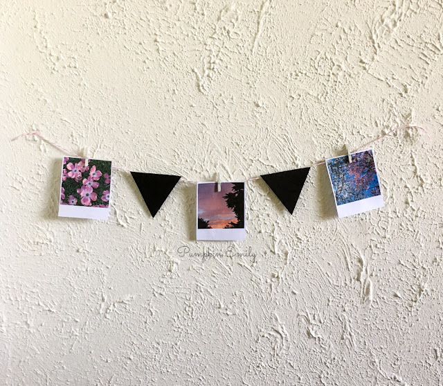 DIY Picture Garland