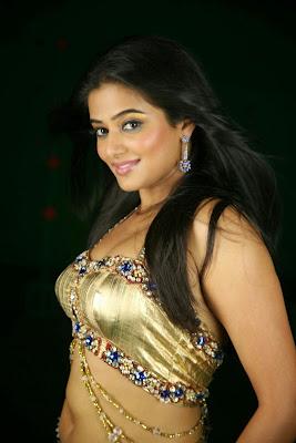 Hot actress Priyamani photos