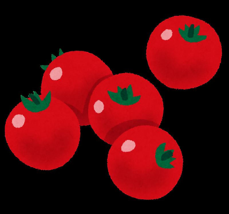 「プチトマト イラストや」の画像検索結果