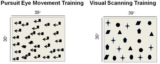 図:視動性刺激療法