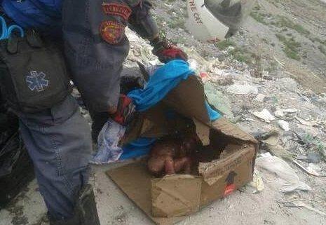 Cadáver de recién nacida encontrado en el botadero de basura de Mérida