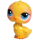 Littlest Pet Shop Singles Chick (#81) Pet