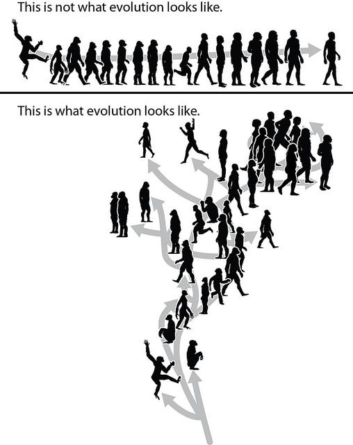 ewolucja biologiczna