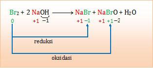 autoredoks , disproporsionasi , mengalami reduksi dan oksidasi , sebagai reduktor dan oksidator