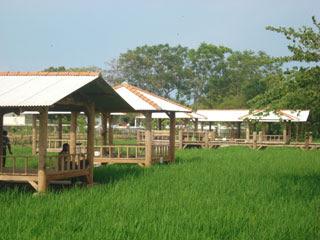 Agrowisata Tirto Arum Baru di Kendal dengan Wisata Keluarga yag Lengkap Agrowisata Tirto Arum Baru di Kendal dengan Wisata Keluarga yag Lengkap