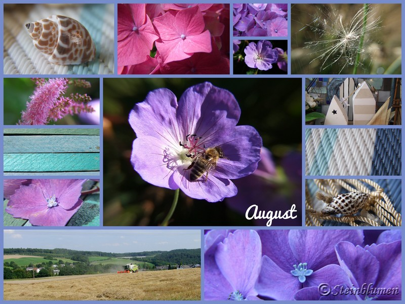 Monatscollage August
