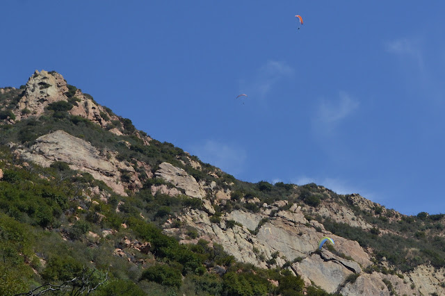 paragliders drifting downward