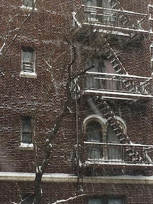 American Dream: Brooklyn Writer