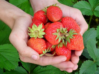 strawberry to increase memory power