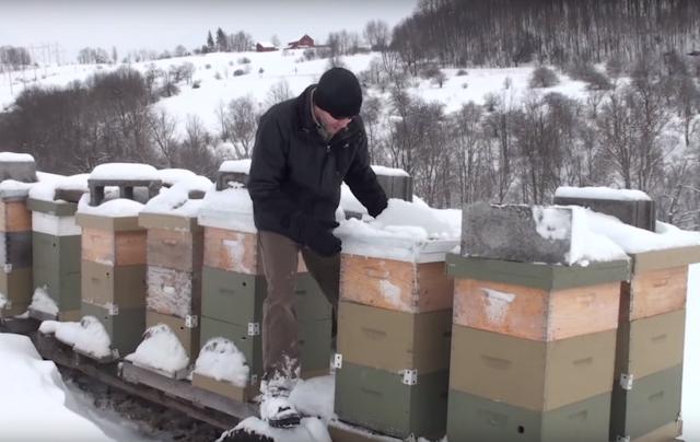 Χειμερινή «επιθεώρηση» στα μελίσσια & μέθοδος μόνωσης εξωτερικά όταν έχει χιόνια & κρύο!