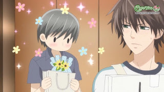 Junjou Romantica SS3 - Anime Junjou Romantica 3 VietSub