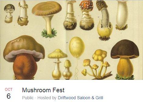 Mushroom dating sites
