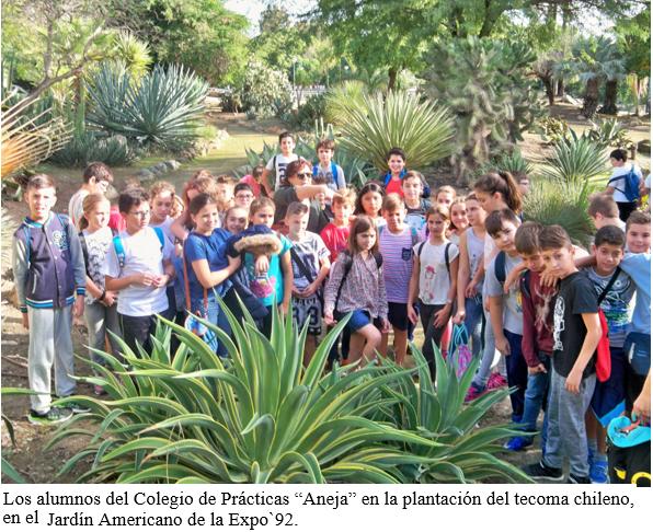 Plataforma ciudadana parques y jardines sevilla jornada for Cabalgata ciudad jardin sevilla 2016