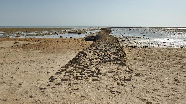 Corrales de Rota -  muros de piedra ostionera