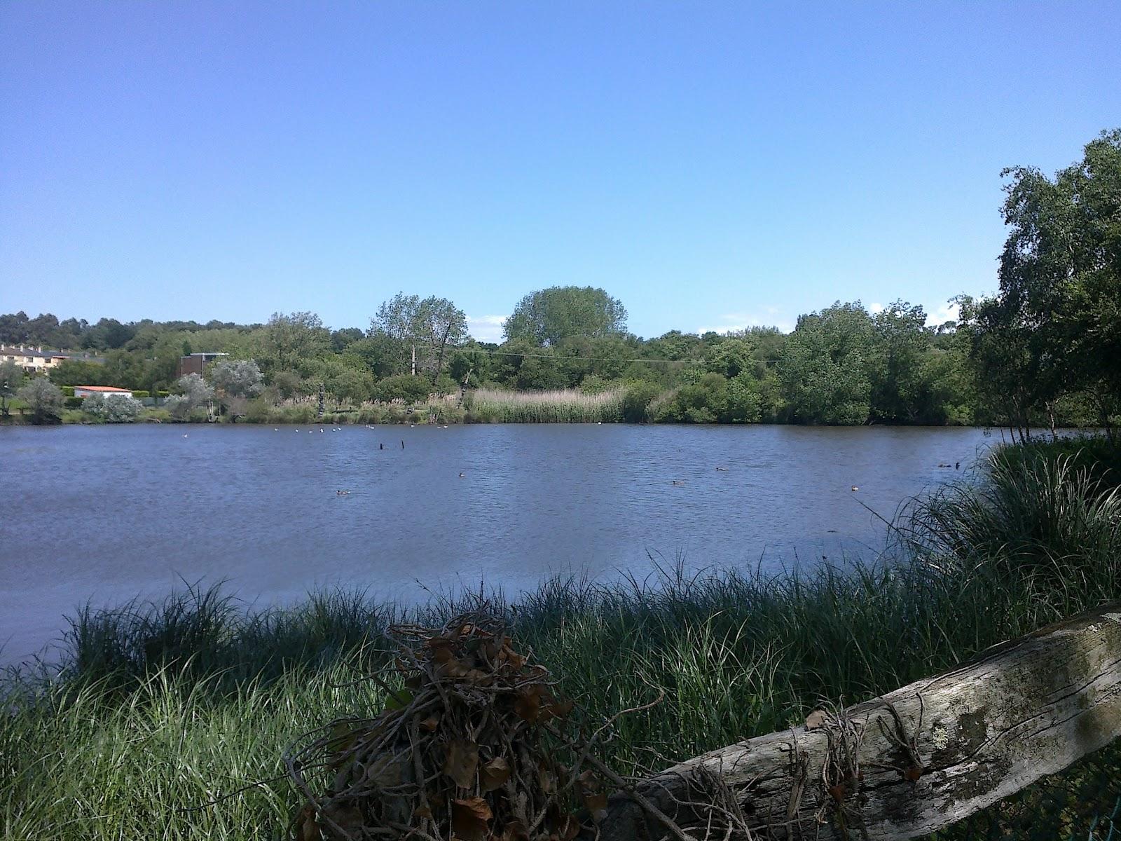 Laguna del Parque de A Lagoa en Oleiros