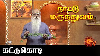 Naattu Maruthuvam 17-06-2016 Sun TV Serial Episode