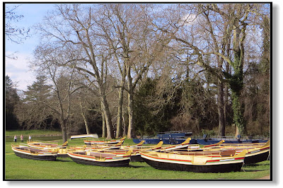 Ruderboote im Wörlitzer Park