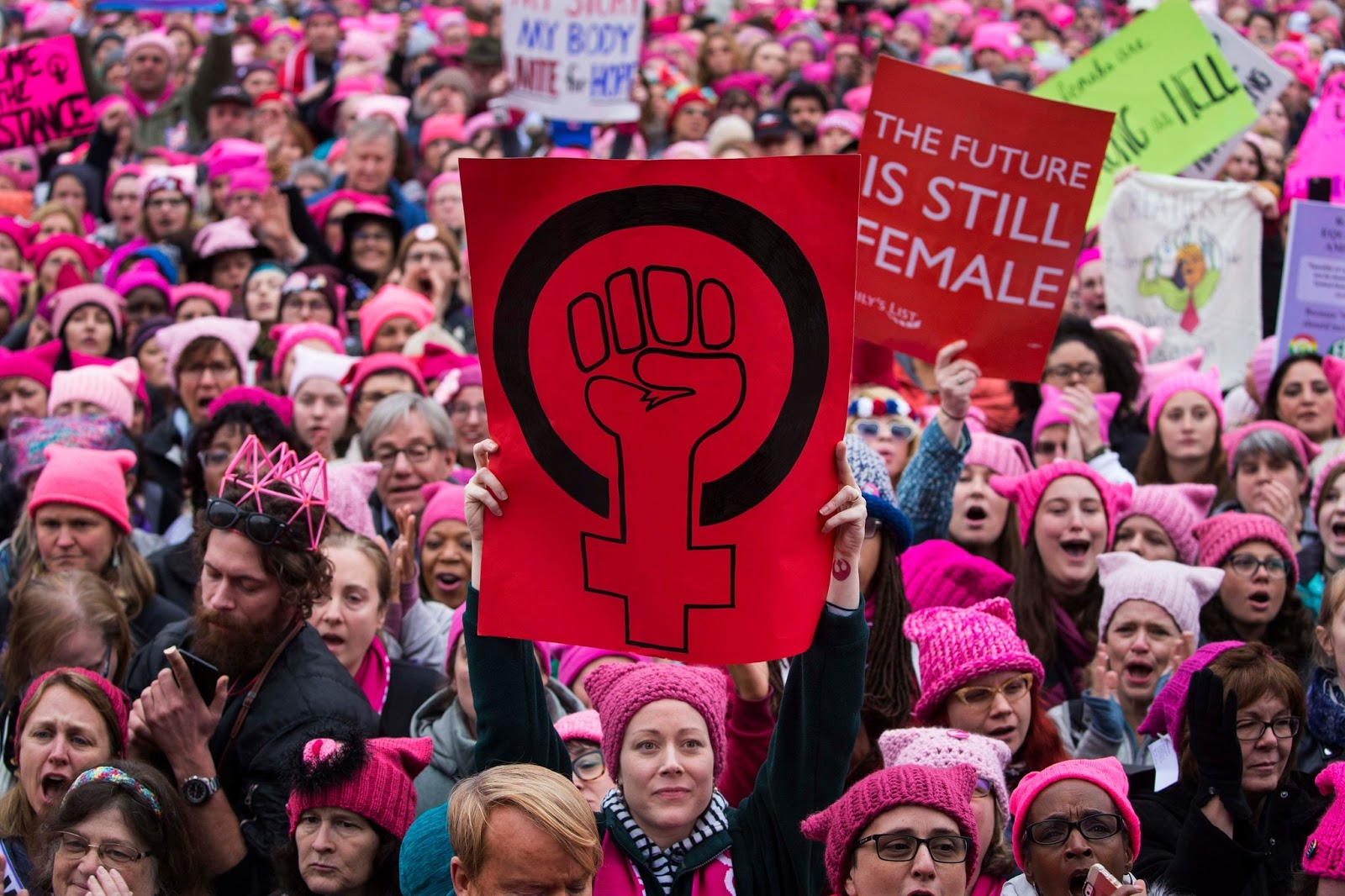 "Image result for Ladies and Emasculated Males We Give you the 2019 ""WOMENS"" March sponsors"