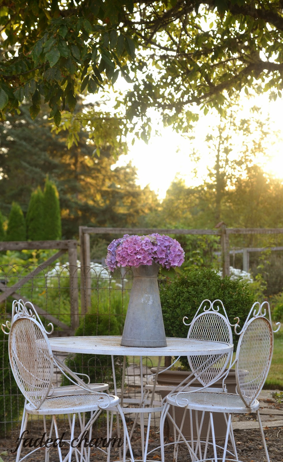 Cottage Garden with Hydrangeas