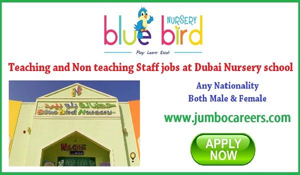 Nursery school jobs openings in Dubai, Dubai jobs for Indians,