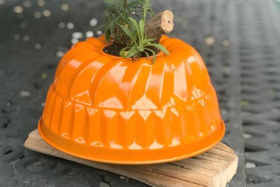 Repurposed Pumpkin Planter