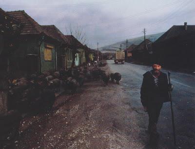 The Beret Project: Black Beret in Copşa Mică